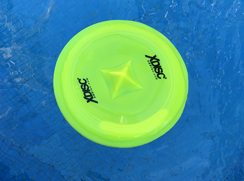 XDISC floating in a pool